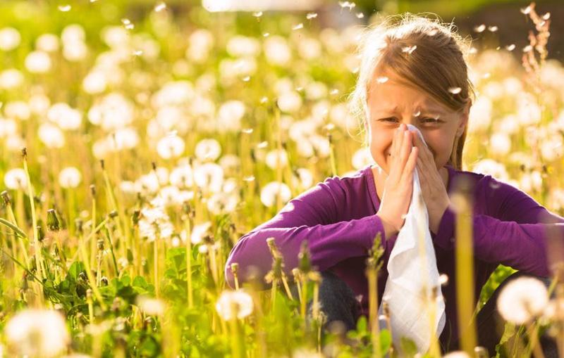 Delavnica za odpravo astme in alergij