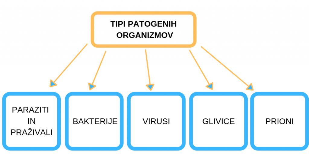Tipi patogenih ogranizmov paraziti
