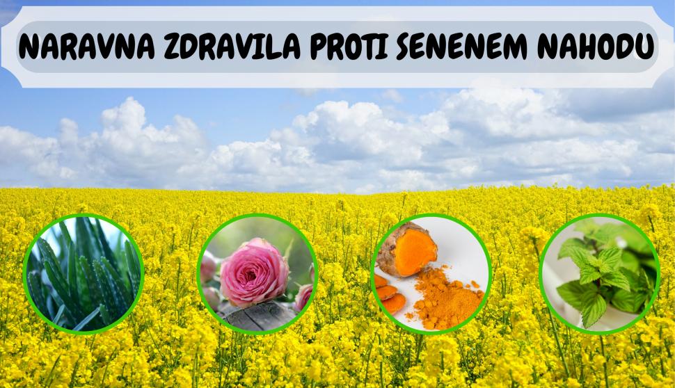 naravna zdravila proti seneneam nahodu rastline zelišča cvetni prah