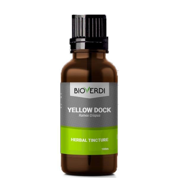 yellow dock tinktura kodrastolistna kislica