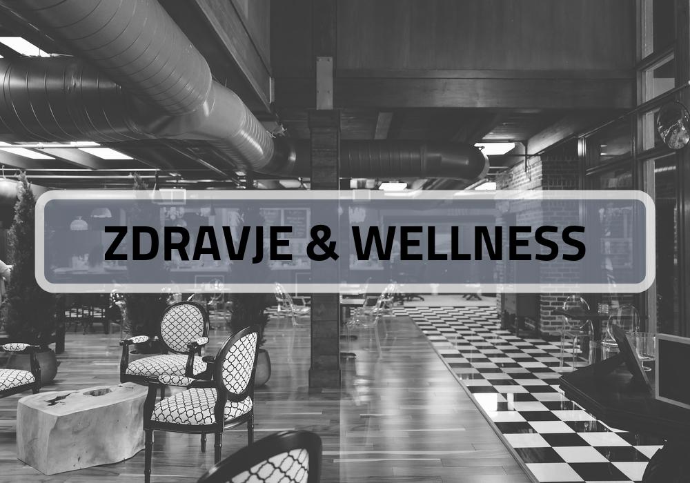 zdravje in wellness industrija