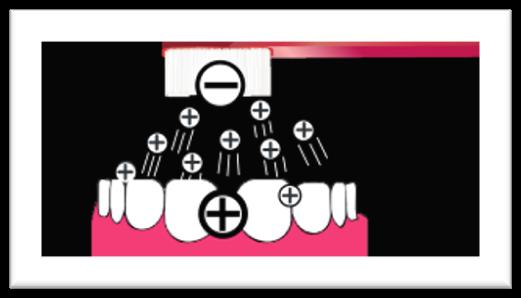 zobne obloge in proces polaritete